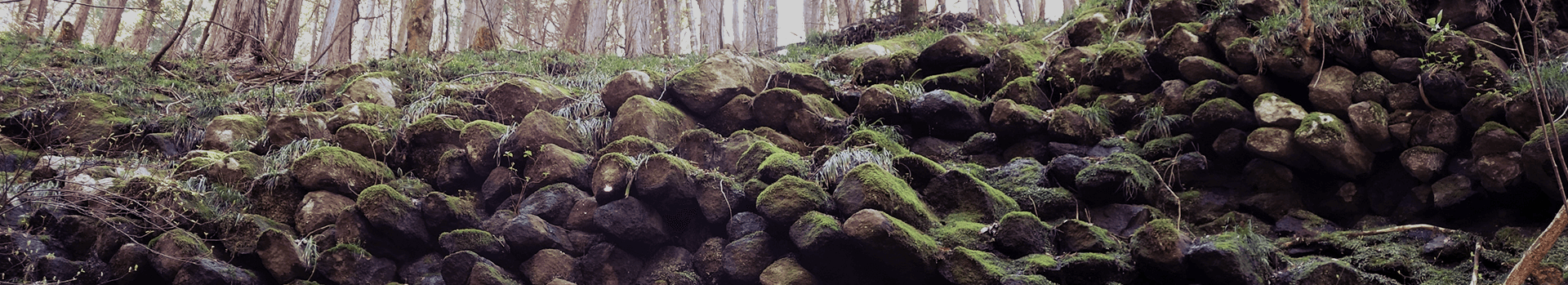 材木岩ページトップ