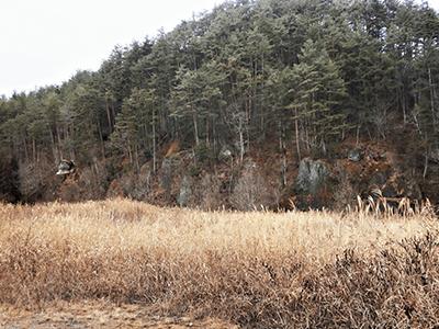 石仏と奇岩群の景色