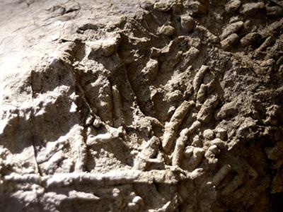 福地化石産地の景色