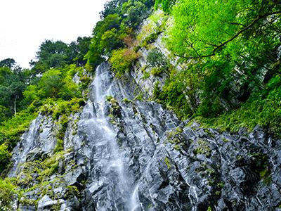 五色ヶ原の風景画像その2