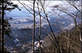 本郷河岸段丘からの景色