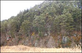 石仏と奇岩群の風景
