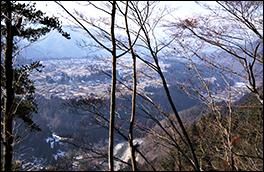 本郷河岸段丘の風景