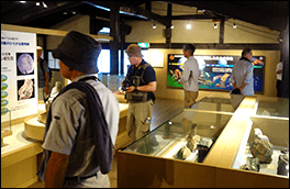 福地化石館の風景