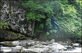 柏当層の岩壁風景画像